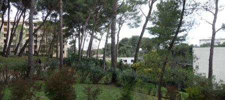 Cannet Rocheville, 3 pièces vue dégagée sur jardin, terrasse, cave et parking